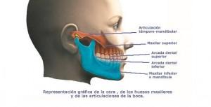 ATM i dolor orofacial articulació dentista granollers